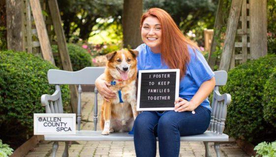 ASPCA Fosters-4