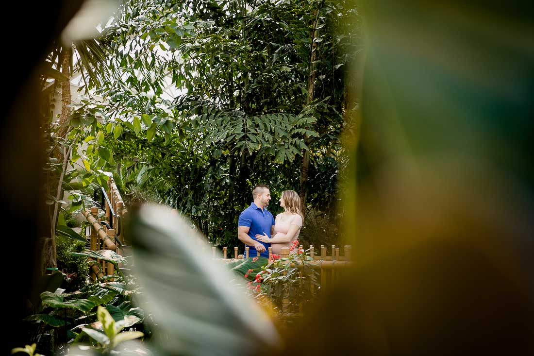 Jessica and Heath, Natural Light Maternity Portrait Session at Foellinger-Friemann Botanical Conservatory, photography by Danielle Doepke, freelance photographer located in Fort Wayne, Indiana